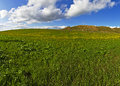 Green grass, blue sky and white clouds Royalty Free Stock Photo