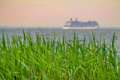 Green grass with a blurried unfocused cruise ship sailing away on sunset horizon. Vacation conception Royalty Free Stock Photo