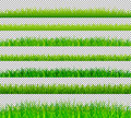Green grass borders set on transparent background vector Royalty Free Stock Photo