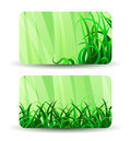 Green grass business cards herbal pattern white Royalty Free Stock Photos