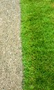 Green grass and concrete floor Royalty Free Stock Photo