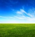 Verde hierba y claro azul cielo