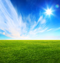 Green grass field and bright blue sky Royalty Free Stock Photo