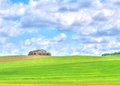 Green grass field landscape under blue sky and clouds