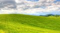 Green grass field landscape under blue sky in spring Royalty Free Stock Photo