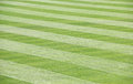 Green Grass Field Mowed with idiagonal stripes Royalty Free Stock Photo
