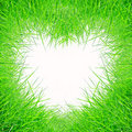 Green grass form heart shape Stock Images