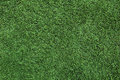 Green grass golf for background Royalty Free Stock Photography