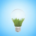 Green grass growing in a light bulb on blue background Royalty Free Stock Photo