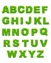 Green grass letters of alphabet for environment or another design Stock Photography