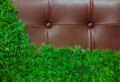 Green grass and luxury leather Stock Photography