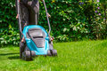 Green grass is mowed lawn mower Royalty Free Stock Photo