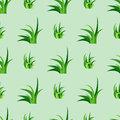 Green grass nature design seamless pattern vector illustration grow herb agriculture nature background