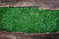 Green grass with old wood frame in the Royalty Free Stock Images