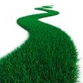 Green Grass path