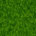 Green Grass Pattern Royalty Free Stock Photo