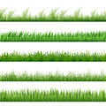 Green grass pattern set. Vector macro borders isolated on white background