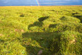 Green grass and a rainbow Royalty Free Stock Photo