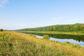 Green grass on riverbank in summer day russia Royalty Free Stock Photo