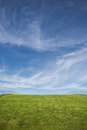 Green grass roof and blue sky Royalty Free Stock Photo