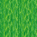 Green grass( seamless) Stock Image