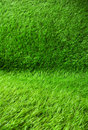 Green grass seamless texture and background Royalty Free Stock Photography