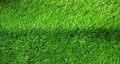 Green grass seamless texture and background Royalty Free Stock Photo