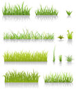 Green Grass Set Stock Photos