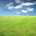 Verde e cielo