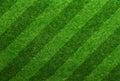 Green Grass Soccer Field Backg...