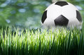Green grass with soccer football Royalty Free Stock Image