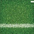 Green grass of soccer football field background with white line.