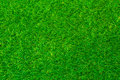 Green grass soccer or golf field background