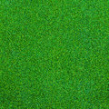 Green grass texture for background Royalty Free Stock Photo