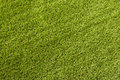 Green grass texture background closeup Stock Photos
