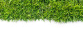 Green grass texture and white background Royalty Free Stock Image
