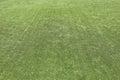 Green grass turf texture background artificial Stock Photos