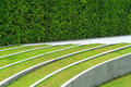 Green grass and white line with space Royalty Free Stock Photo
