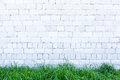 Green grass and white wall brick Royalty Free Stock Photo