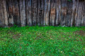 Green grass on wood background wall nature Stock Images