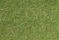 Green grassed lawn texture background Royalty Free Stock Photo