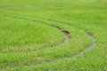Green grassy bright background ,There is a curve to plow. Royalty Free Stock Photo