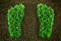 Green grassy footprints Royalty Free Stock Photo