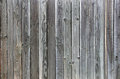 Green Grey Tinted Wood fence background unique grain Royalty Free Stock Photo