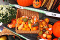 Green grocer stall pumpkin harvest photo of a farmer s market with farm produce on display like winter squash and corn maize Royalty Free Stock Photo