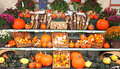 Green grocer stall pumpkin harvest photo of a farmer s market with farm produce on display like winter squash displayed stored on Royalty Free Stock Images
