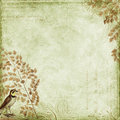 Green Grungy background design with bird, leaves Royalty Free Stock Photos