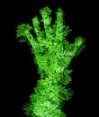 Verde mano