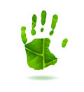 Green handprint made from leaf ecology concept Stock Photos