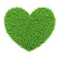 Green heart made of grass isolated on white ecology eco conservation nature love creative concept background Stock Image